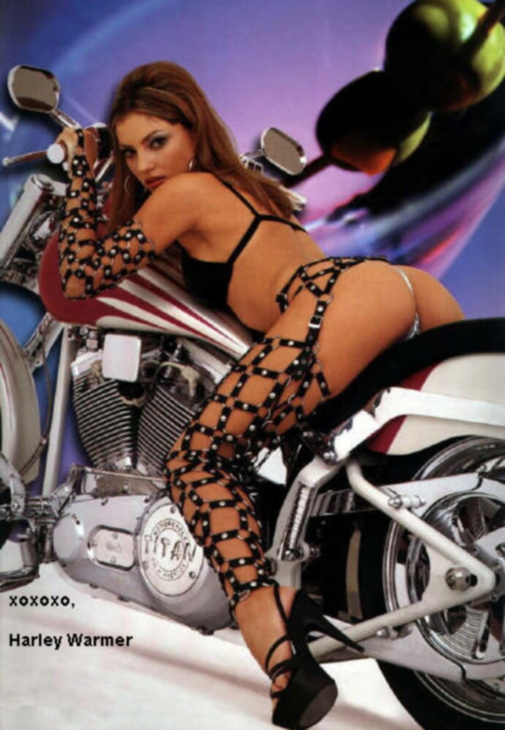harley hottie - harley babes - girls on harleys - biker girls - hog honeys